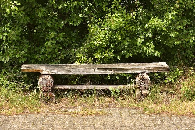 lavička v parku.jpg